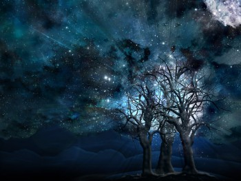 img-fonds-decran-glittery-sky-with-mystery-trees-design-maker-11998.jpg